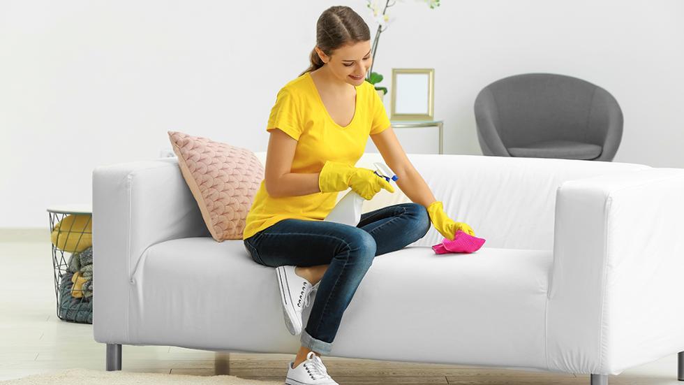 Sofa Cleaning Harris Park