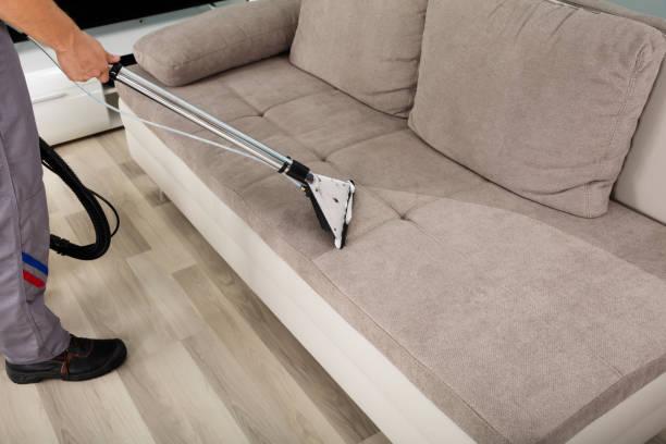 sofa cleaning emerton