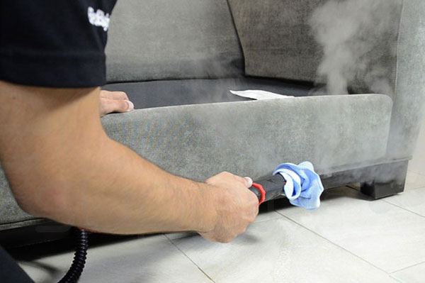 Best Couch Steam Cleaning in Newton