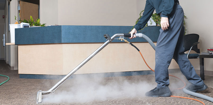 Best Lounge steam cleaning in Manly