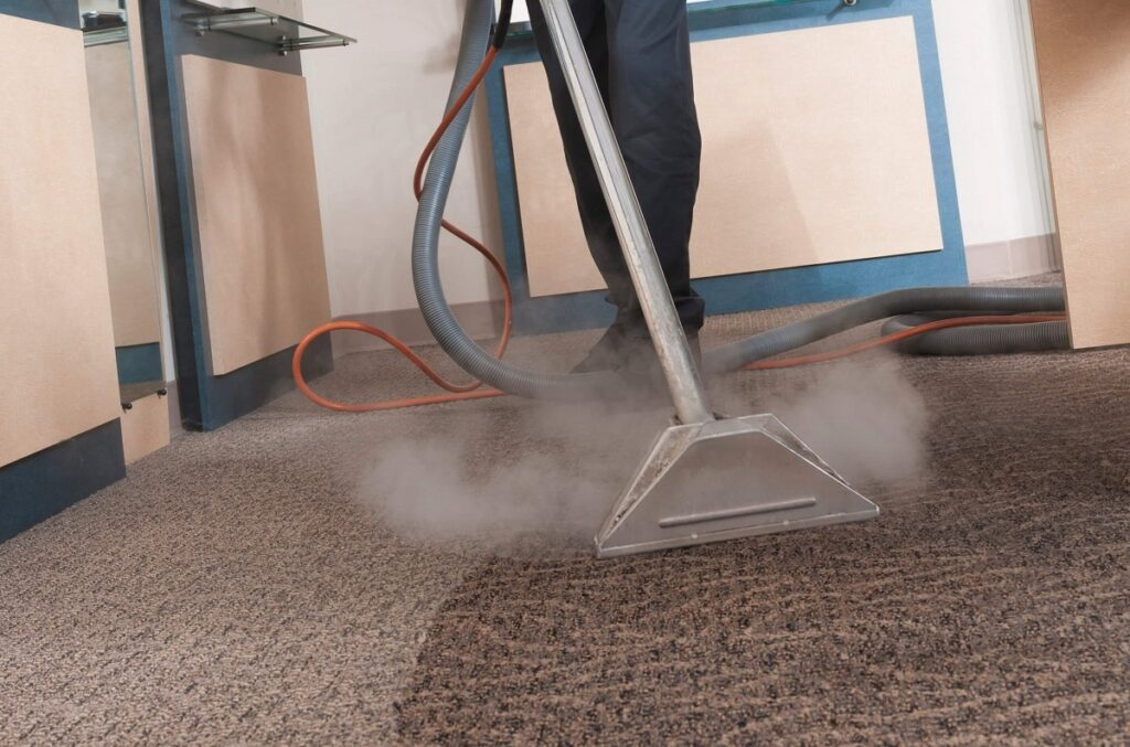 Best Lounge steam cleaning in Newton
