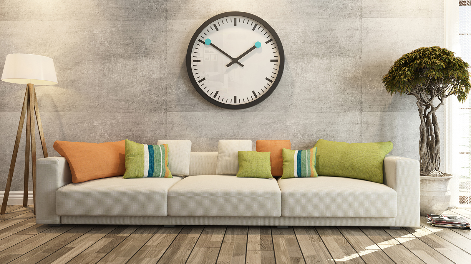 Best Sofa Cleaning in Newton