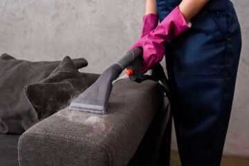 Best Sofa steam cleaning in Vaucluse