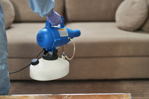 Best Upholstery steam cleaning in Mosman