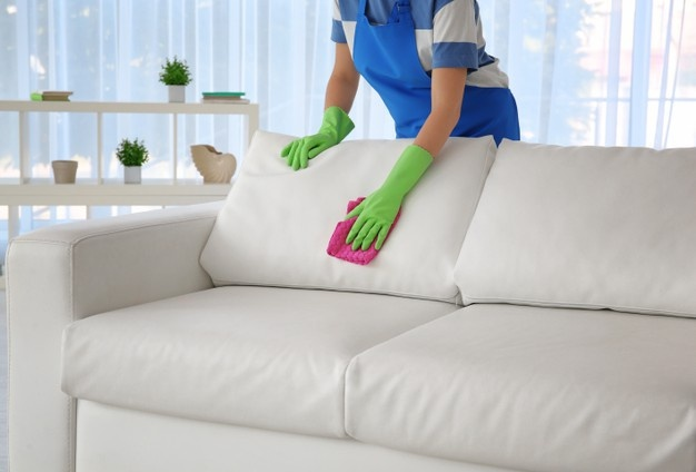 Best Couch cleaning in Bonnet