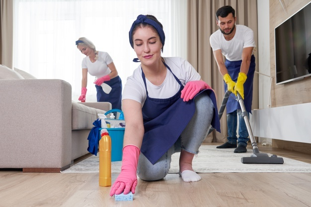 Best Lounge cleaning in Bulli