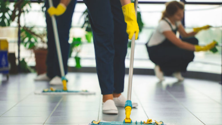 Best Lounge steam cleaning in Chatswood