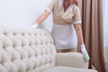 Best Upholstery cleaning in Willoughby